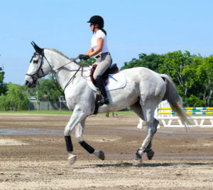 Amanda Silvers has recently started getting serious about showjumping.